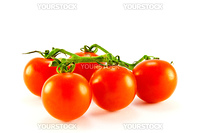 Cherry tomatoes on the vine with clipping path on a white background