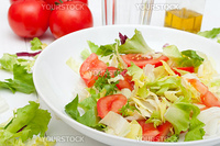 Salad of Fresh Green Vegetables on White Plate