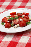Photo of a Caprese salad with tomato, mozzarella, basil, balsamic and olive oil.