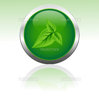 illustration of vector icon with leaf in it