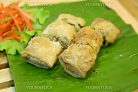 Traditional vietnamese spring rolls appetizer side dish