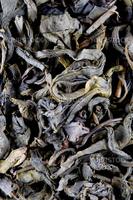 high quality green tea background