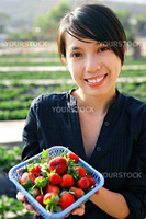 girl pick strawberry