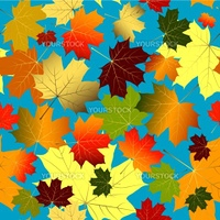Floral seamless blue pattern of colorful maple leaves (vector)