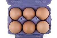 brown hens eggs in blue egg carton, isolated on white background