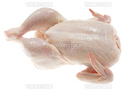 raw chicken photo on the white background