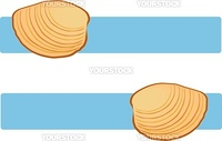 Vector Illustration of clam shells over blue title banners.