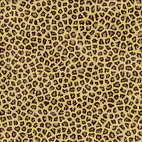 an large illustration of spotted leopard or jaguar skin or fur