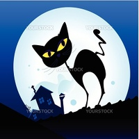 Silhouette of black cat with yellow eyes on the roof. Night town with full moon in background. Vector Illustration.