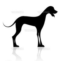 illustration of black dog silhouette on isolated background