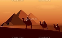 Caravan camels among desert and pyramids. Vector