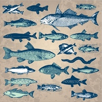 Set of antique fish engravings, scalable and editable vector illustration
