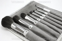 Makeup brushes, set of 8 with carry pouch, isolated on white