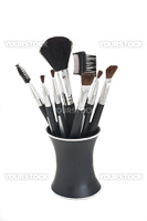 Cosmetic brushes of various styles in black stand, all isolated against a white background.
