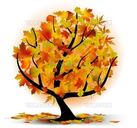 Autumn tree with colourful leafs. EPS 8 vector file included