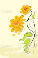 illustration of vector floral background