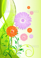 illustration of colorful vector background with flowers on white background