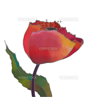 batik red tulip isolated over white background