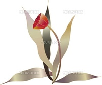 red tulip vector flower sketch