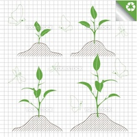 Branch of sprout with green leaves vector background for poster