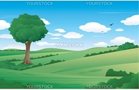 beautiful spring nature landscape illustration