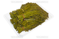 Bracken fern - a popular dish of Japanese and Korean cuisine