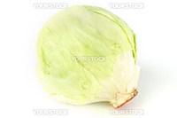 cabbage isolated isolated on white background