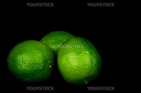 lime isolated close up