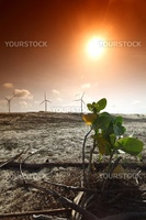 desert windmills in dunes energy