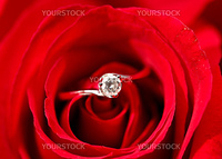 rose with ring