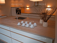 Modern clean lines design trendy kitchen with wood elements and decoration