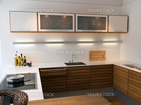 Modern clean lines design trendy kitchen made with wood elements