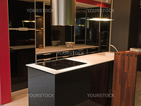 Modern design trendy kitchen with black and white wood elements, metal and glass