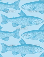 Seamless fish pattern, perfectly tile-able both vertically and horizontally  scalable and editable vector illustration