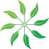 Elegant feather emblem design for your business