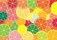 Citrus slices multicolored background. Vector illustration.