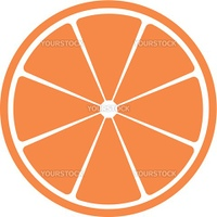 Slice of citrus fruit. A vector illustration. It is isolated on a white background.