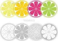 Stylized vector citrus slices set isolated on white background. Color and black&white version.