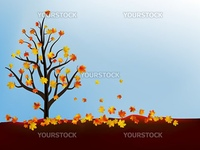 Autumn maple tree. EPS 8 vector file included