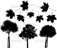 Set of vector trees and maple leaves silhouettes