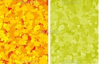 Autumn colorful maple leaves. EPS 8 vector file included