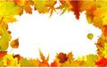 タイトル:Autumn leaves border for copy space. EPS 8 vector file included