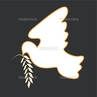 White dove with straightened wing with branch on grey background