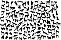 Set of silhouettes of different breeds of dogs