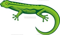 A green lizard with woodcut shading isolated on white background.