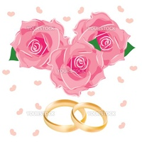 vector illustration, wedding rings and pink flowers
