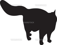 Silhouette of the well-fed cat, vector, illustration