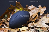 Football sits grandly in colorful autumn leaves, confident as one of autumn's favorite sports