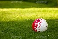 Soccer ball on a fresh green grass.
