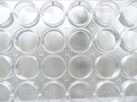 Experimental transparent empty test plate wells